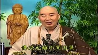 Kinh Vô Luợng Thọ (1998) tập 101&102  - Pháp sư Tịnh Không