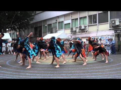 小岩第四中学校/南中ソーラン/第1回小岩阿波踊り2014