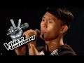Talking to the Moon - Bruno Mars | Dehua Hu Cover | The Voice of Germany 2016 | Audition