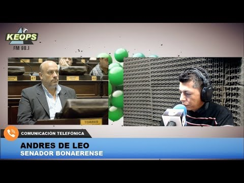 El senador bonaerense de Cambiemos Andrés De Leo analizó la crisis económica del país