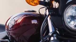 8. 2015 Harley Davidson Street 500 (979) 849-3681