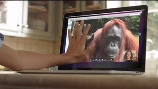 AMAZING - Orangutan Asks Girl For Help In Sign Language!