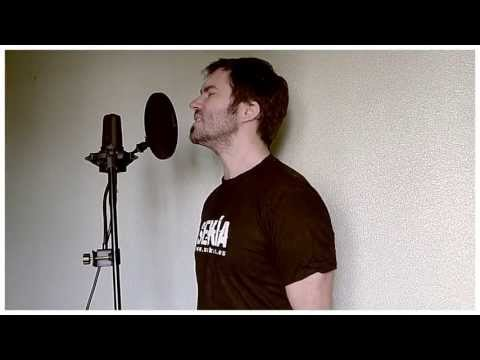 Bad Religion - Medley (cover by Jotun Studio)