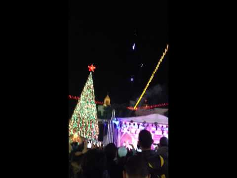 Lighting The Christmas Tree - Bethlehem 2013