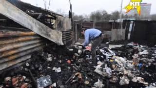 В Москве подожгли приют для бездомных животных