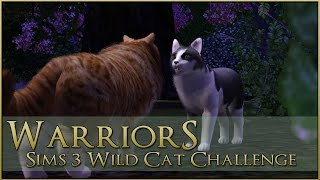Nonton The Blood Of The Crow      Warrior Cats Sims 3 Legacy   Episode  70 Film Subtitle Indonesia Streaming Movie Download