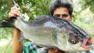 Big Size Fish Recipe