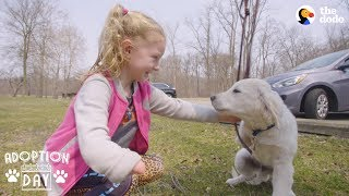 Very Special Puppy Gets A Sister Who's Just Like Him - POPCORN | The Dodo Adoption Day by The Dodo