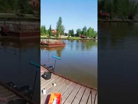 Видеоотчет о рыбалке за 10 июля 2021 г.