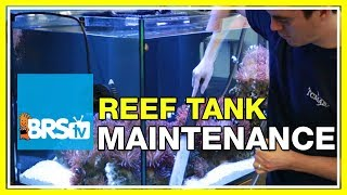 FAQ #34: What does it take to maintain a 160 gallon reef tank like the BRS 160?