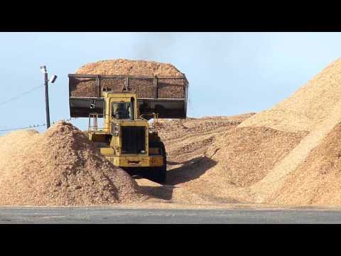 Front end loader working scooping wood chips