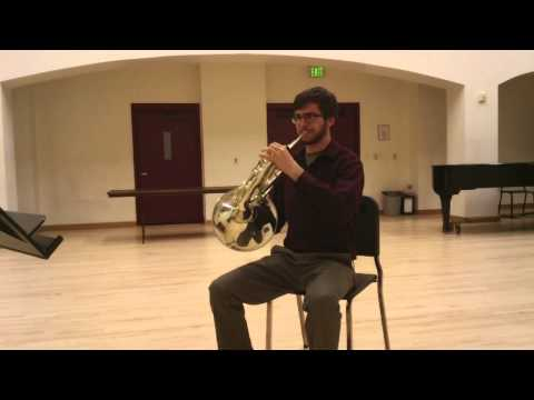 Scott Ullman Ozarks Horn Audition