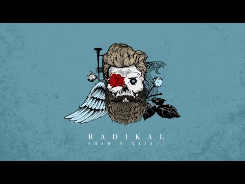 Shahin Najafi - Radikal (Album Radikal)