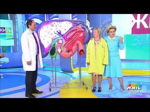 Жить здорово Хронический панкреатит. Как лечить (13.06.2018) - DomaVideo.Ru