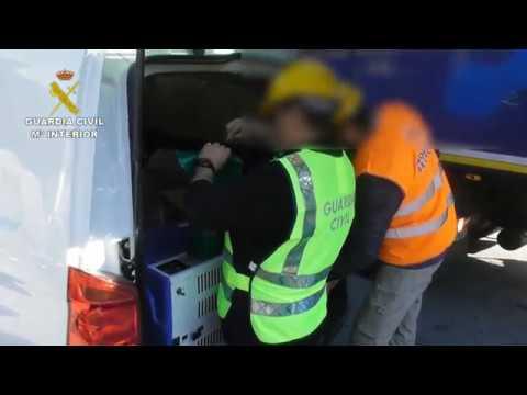 Gestionaban irregularmente toneladas de residuos peligrosos en Erandio, Vizcaya