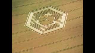 The enigma of crop circles