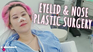 Eyelid and Nose Plastic Surgery - Xiaxue's Guide To Life: EP211