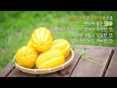 강남구청 카드뉴스 - 여름철 과일