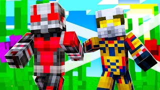 Playing Antman Superhero Hide And Seek In Minecraft | JeromeASF