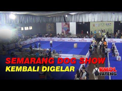 Semarang Dog Show 2019 Kembali Digelar