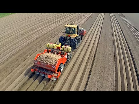 Бездушная посадка картошки