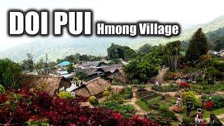 Suab Hmong TRAVEL in ASIA Episode 4 - Ban Doi Pui Hmong Village in Chiangmai, Thailand