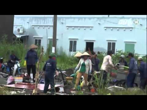 Hậu Giang: Mưa lớn khiến hơn 30 căn nhà sập và tốc mái