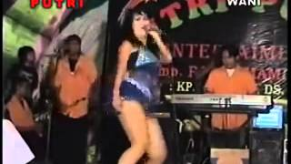 Dangdut Super Hot  --  Adelia ---  Curang