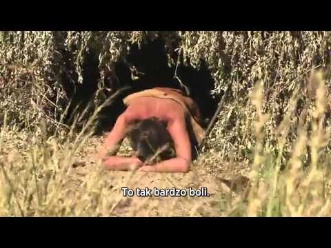 kultura-seksa-discovery-channel
