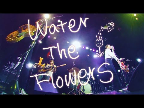 , title : 'LEARNERS - WATER THE FLOWERS'