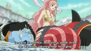 One Piece | kru SHP takjub saat Luffy baru pertama kali menggunakan Haki raja