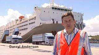 Video Livestock Transport: Take a ship tour onboard MV Becrux MP3, 3GP, MP4, WEBM, AVI, FLV Agustus 2018