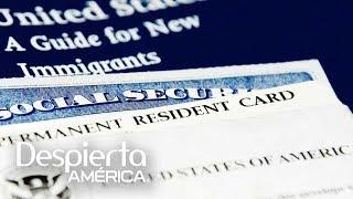Nuevo trámite para solicitar permisos de trabajo y seguro social