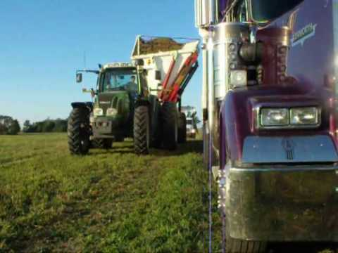 how to harvest alfalfa