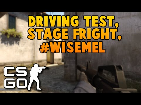 Driving Test, Stage fright, Snowboarding wipeout || WISE MEL