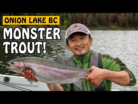 Fishing with Rod: Jungle Monster Trout
