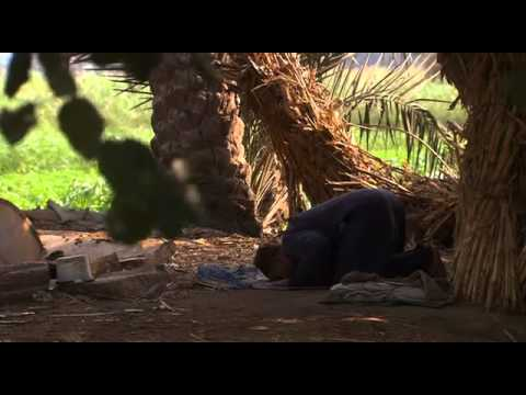 SUNNI - An intependant non muslim channel 4 documentary (the Quran) explaining the difference between sunni Islam and Shia'ism. It clearer states that the Shia docto...