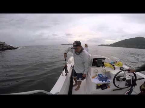 Pescaria Angra dos Reis / Paraty / Ilha Grande - Camarão Artificial - Cioba Garoupa - Guia Marcatto