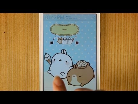 Video of [Sale] Molang Ani Memo Widget
