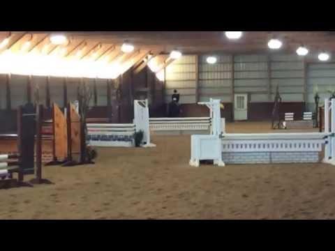 Equitation Horse for Sale Nj/Pa