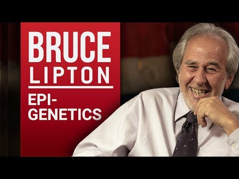 BRUCE LIPTON - BIOLOGY OF BELIEF - Part 1/2   London Real
