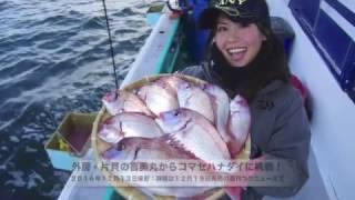 喜美丸 ハナダイ/2016年12月13日そらなさゆりさんが外房・片貝の喜美丸からハナダイに挑戦!クリスマス釣行にも年末年始の食材確保にもうってつけのハナダイ五目。周年専門的に出船している喜美丸で土産十分な釣行となりました。詳細は12月19日発売の週刊つりニュース関東版で。喜美丸http://www.kimimaru.com