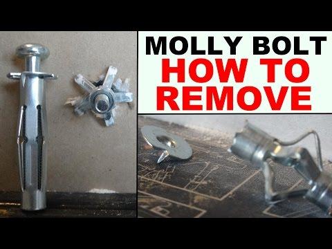 Comment poser cheville molly sans pince la r ponse est - Cheville molly sans pince ...