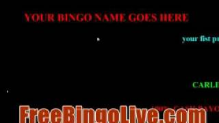 BINGO SOFTWARE V2 WITH PROMO PAGE AND YOUR COMPANY NAME, BINGO ONLINE