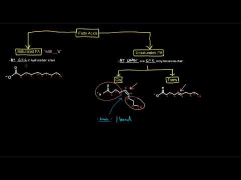 Lipids (Part 2 of 11) - Free Fatty Acids - Intro and Properties