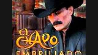 video y letra de El problema sera (audio) por Chapo de Sinaloa