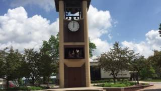 New Ulm (MN) United States  City pictures : Glockenspiel Clock Performance in New Ulm, Minnesota