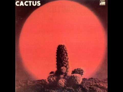 Tekst piosenki Cactus - My Lady From South Detroid po polsku
