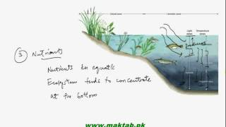 This video lecture from Some Major Ecosystems (F.Sc. second year Biology) covers introduction to some major ecosystems, details about climate and temperature and information about aquatic ecosystem in general. Find more e-learning material and educational video lectures in Urdu at maktab.pk. These videos are free to use for promotional and commercial purpose by keeping the credits to Maktab.