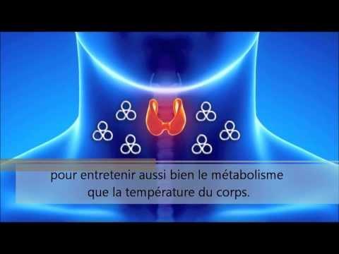 9-la.glande.thyroide.et.l.hypothyroidie
